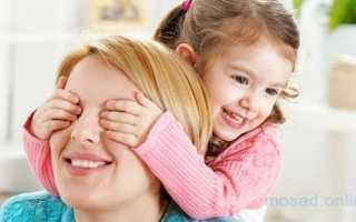Мать одиночка — правовой статус, льготы и пособия. Что положено матери-одиночке с двумя детьми