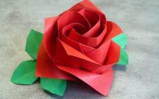 Оригами роза из бумаги по шаговой инструкции. Оригами «роза»: схемы сборки. Модульное оригами роза