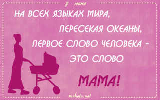 День матери: красивые цитаты и афоризмы о мамах. День матери: цитаты, высказывания, афоризмы