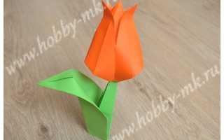 Оригами из бумаги для начинающих тюльпан. Тюльпан из бумаги в технике оригами — мастер-класс
