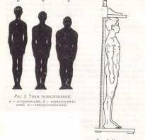Атлетический тип телосложения у женщин. Типы телосложения и конституция человека
