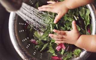 Как сделать цветы из листьев руками. Розы из кленовых листьев своими руками пошагово