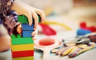 Что включает в себя раннее развитие ребенка. Что такое раннее развитие детей и зачем оно нужно