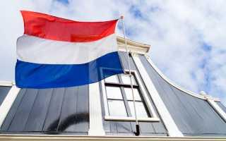 Русско голландский разговорник. Полезные фразы нидерландского языка. Какой язык в Нидерландах