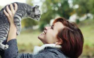 Любит ли меня кошка. Как узнать отношение кота к себе, понять, что он тебя любит