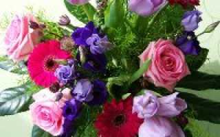 Благодарность коллективу сада в прозе. Слова благодарности от родителей детскому саду