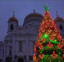 Самая высокая елка в мире. Где была установлена самая высокая новогодняя елка