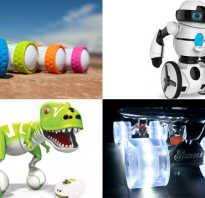 Новая игрушка для детей. Какие игрушки считаются самыми модными у современных детей