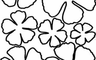 Цветы из бумаги своими руками: схемы и шаблоны. Как делать большие цветы из бумаги