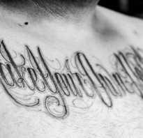 Оригинальные надписи для тату. Тату-надписи с переводом на руке. Мысли о свободе