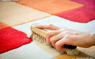Очистить ковер в домашних условиях. Секреты как быстро и эффективно почистить ковер и палас