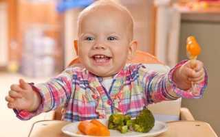Что можно приготовить детям 10 месяца. Как должен питаться десятимесячный ребенок
