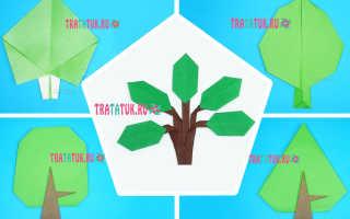 Как сделать куст из бумаги. Осеннее дерево в технике оригами. Видео мастер класс