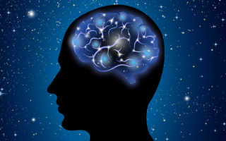 8 типов интеллекта по гарднеру интересная. Виды интеллекта. тип — Экзистенциальный