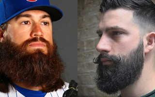 Как правильно подстричь усы. Все виды и формы бороды у мужчин: фото с названиями