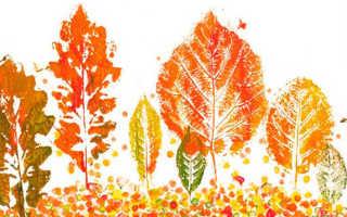 Поделки из бумаги на тему осень. Осенние поделки для детского сада и школы (все новинки)