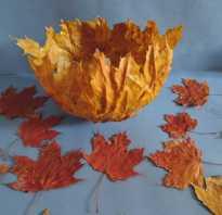 Осенние поделки не сложные. Осенне красное яблоко. Как сделать вазу из веточек