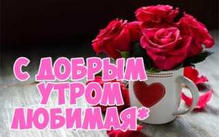 Открытки для любимой девушки с добрым днем. С добрым утром, любимая: подборка милых картинок