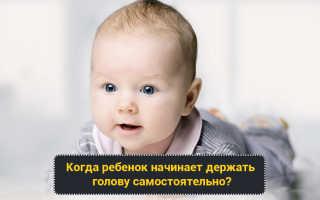 Когда ребенок держит голову. Во сколько месяцев ребенок начинает держать голову и как его научить