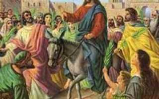 Куда девать старую вербу после Вербного воскресения? Когда освящают вербы в церкви