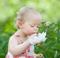 Где отметить день рождения ребенка на природе. День рождения ребенка на природе