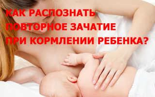 Кормление грудью на ранних сроках беременности. Восемь достоверных признаков беременности при гв
