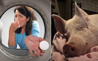 Вонь в стиральной машине как нейтрализовать. Как устранить неприятный запах в стиральной машине