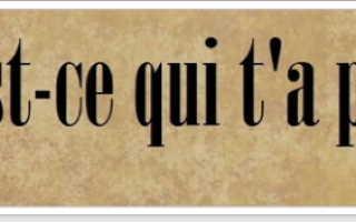 Красивые фразы о жизни на французском. Красивые французские слова и фразы с переводом