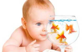 Что может делать 6 месячный ребенок. Календарь развития шестимесячного ребенка